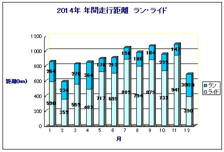 2014年間記録