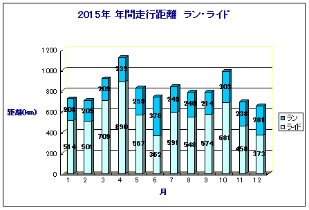 2015年間記録