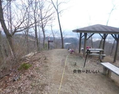 ワンコとお出かけ(八重山)