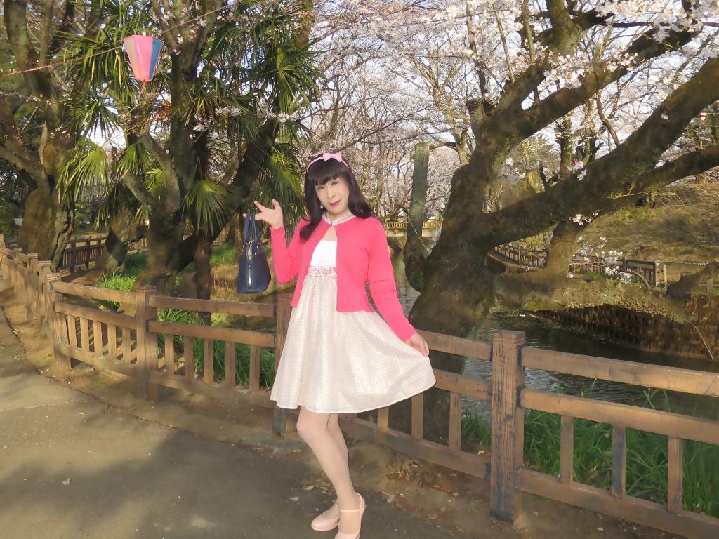 ワンピとピンクカーデD(1)