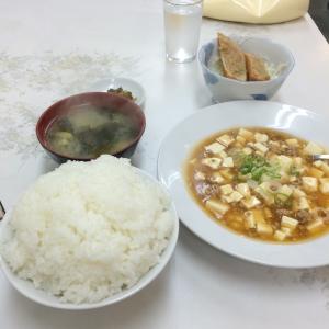 IMG_1953麻婆&春巻き