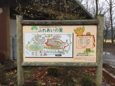 photo_160319_011.jpg