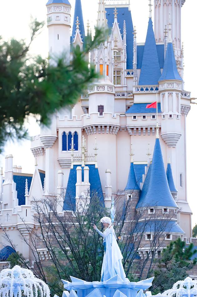 陛下とシンデレラ城*フロファン1