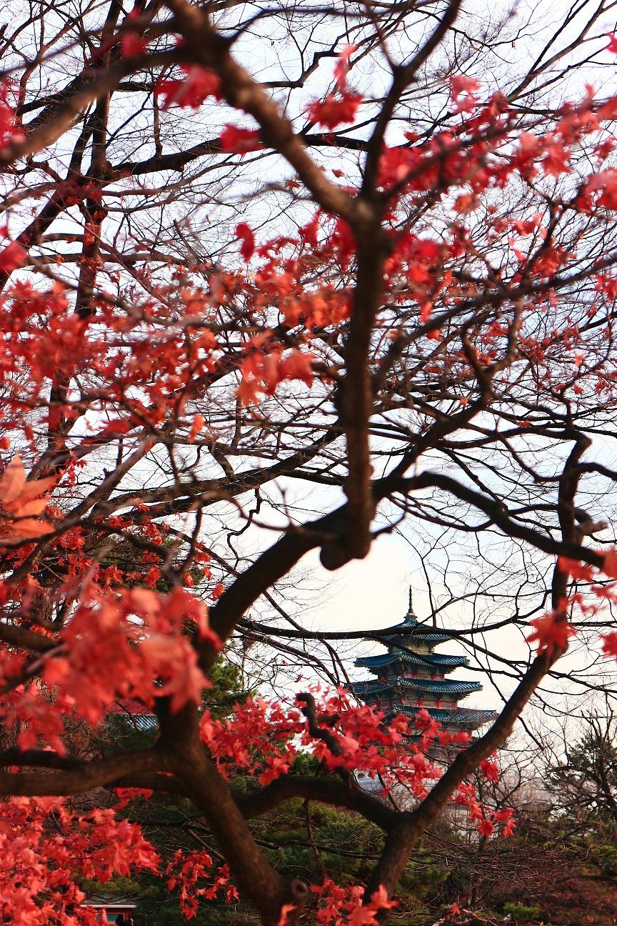韓国 景福宮