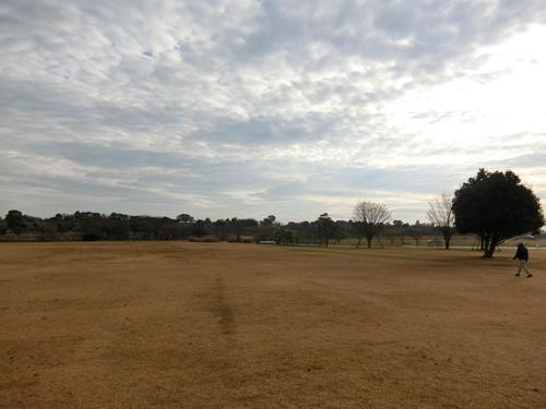 吉野ケ里公園です。