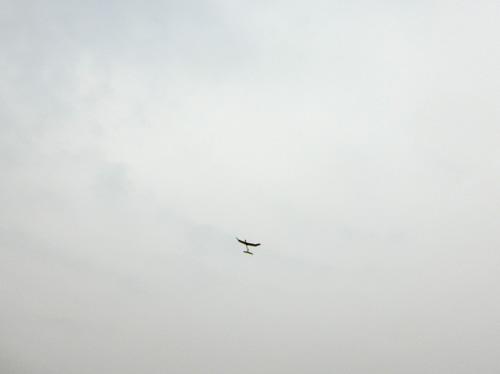 kh-1605s その4