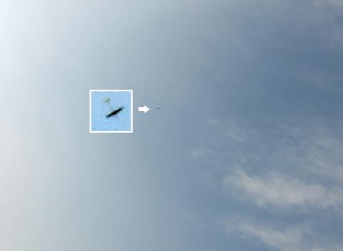 飛んでるトコ。その2