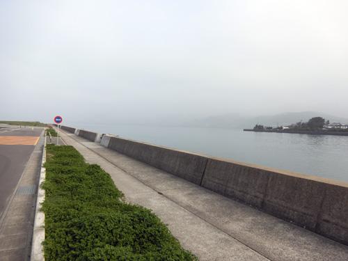 ココにも、霧。