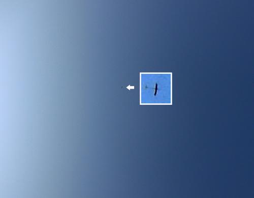 ゴム機、飛んでるトコ。 その3。