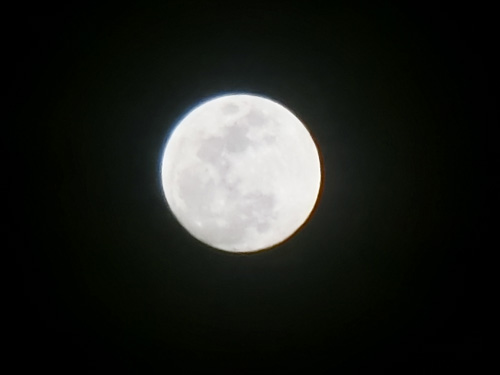 昨日のお月様。