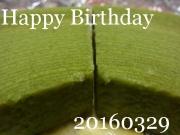 16032901.jpg