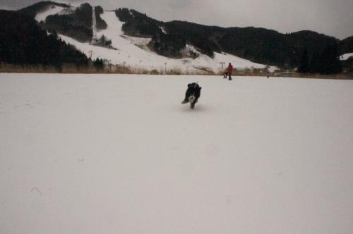 雪遊び再び