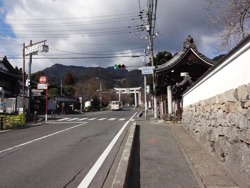2016sakamoto1.jpg