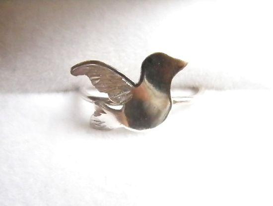 小鳥シルバー2