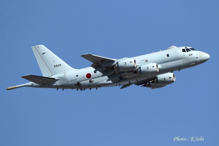 A-1447.jpg