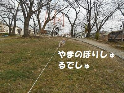 DSCN8830.jpg