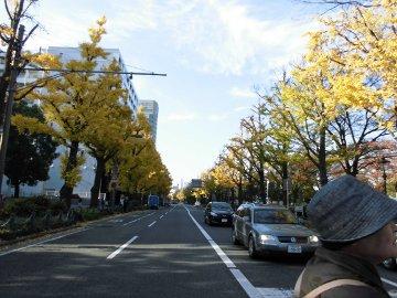 鎌倉、東京、横浜33