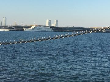 鎌倉、東京、横浜35