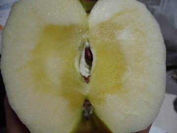 りんごいろいろ2