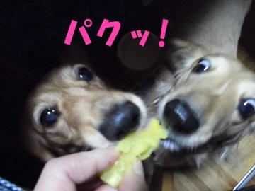 焼き芋食べよ3
