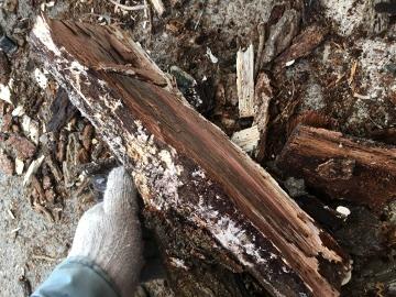 薪が増えた3