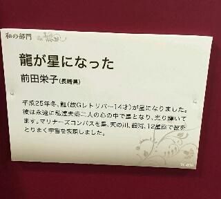 moblog_08c25c63.jpg