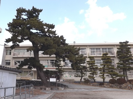3伊勢の城めぐりの旅(長島城老大松)
