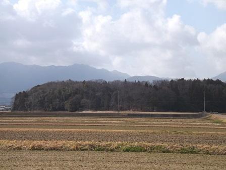 12伊勢の城めぐりの旅(保々西城遠景)