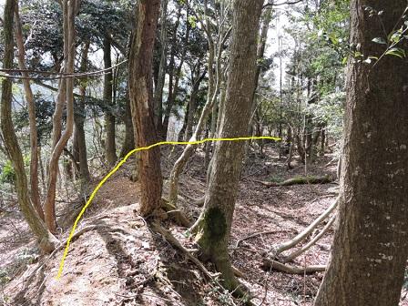 8駈倉山砦跡南面土塁