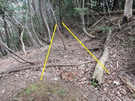 11駈倉山砦跡北側腰曲輪
