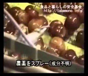 TPPが危ない理由!安倍晋三と自民党と外務省が進めるTPPが実現すると日本のスーパーはこんな食品ばっかりになります 検察と最高裁はこのような国にするために米策捜査と米策司法と米策行政 偽装社会