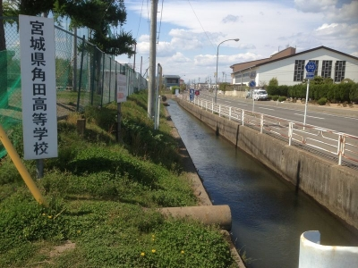 堀跡の水路1