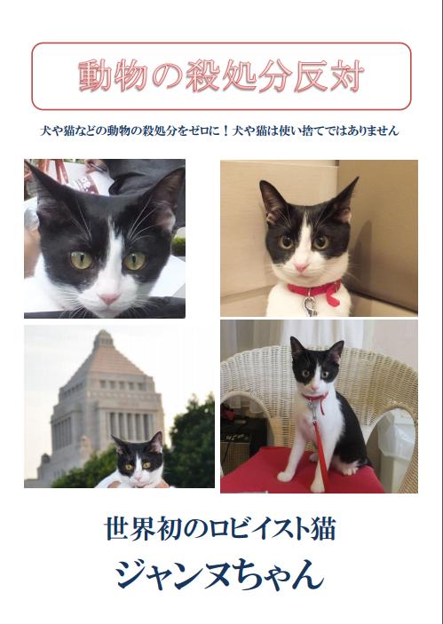 映画 ジャンヌちゃんポスター 案1