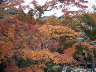 円満院庭園