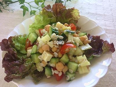 食物繊維たっぷり♪押し麦とひよこ豆のサラダ