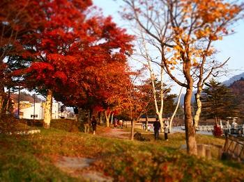 日光20151024-12