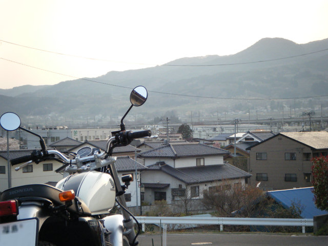 20100419-sakura-02.jpg