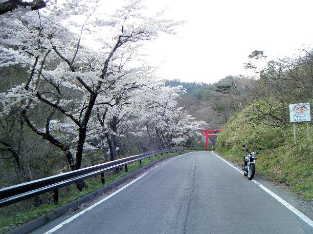 20100501-shichigasyuku-11.jpg