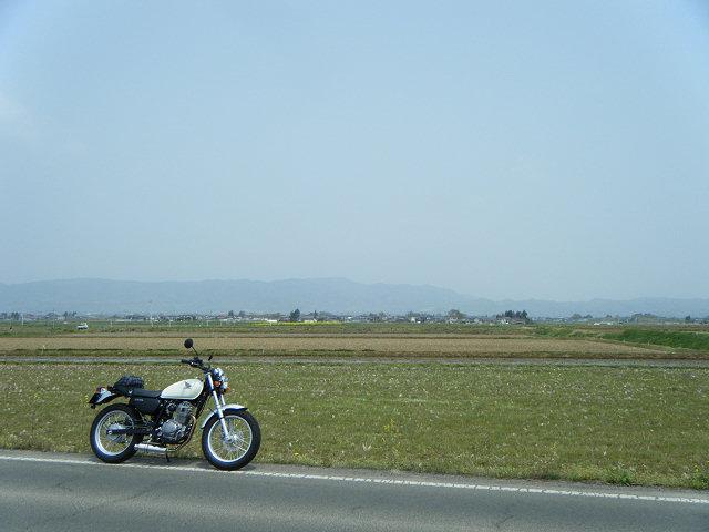 20100504-02.jpg