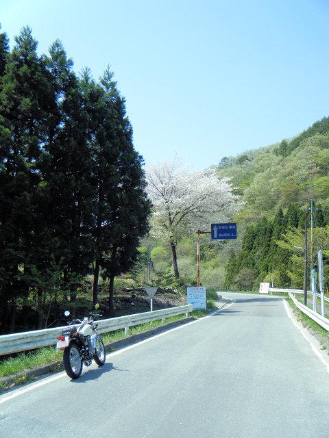 20100508-11.jpg