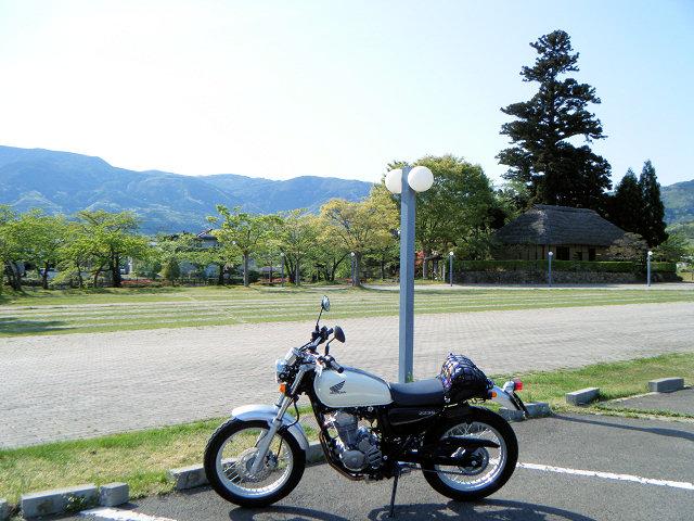 20100508-15.jpg