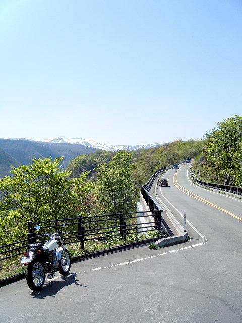20100517-17.jpg