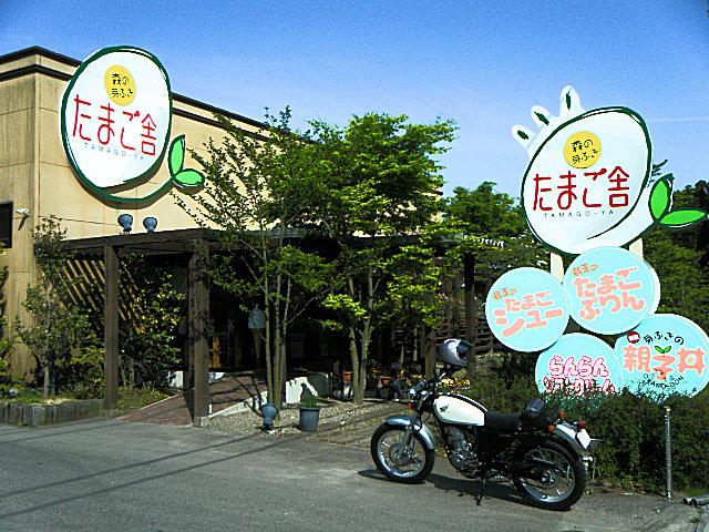 20100517-32.jpg
