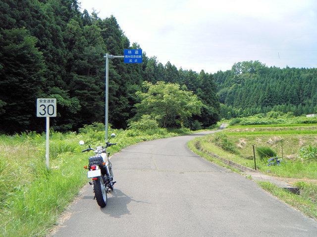 20100710-23.jpg