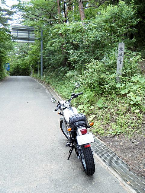 20100711-15.jpg