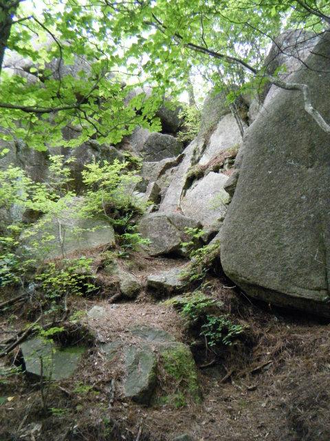 20100711-35.jpg
