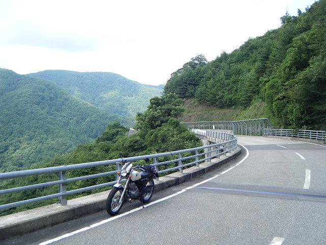 20100807-57-0929-kobushi.jpg