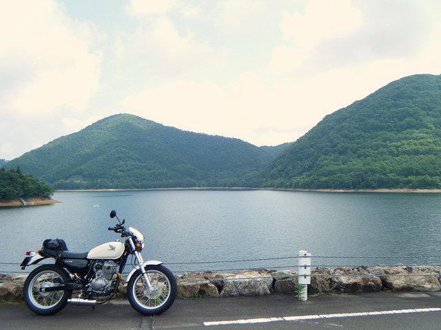 20100807-60-0942-damu1.jpg