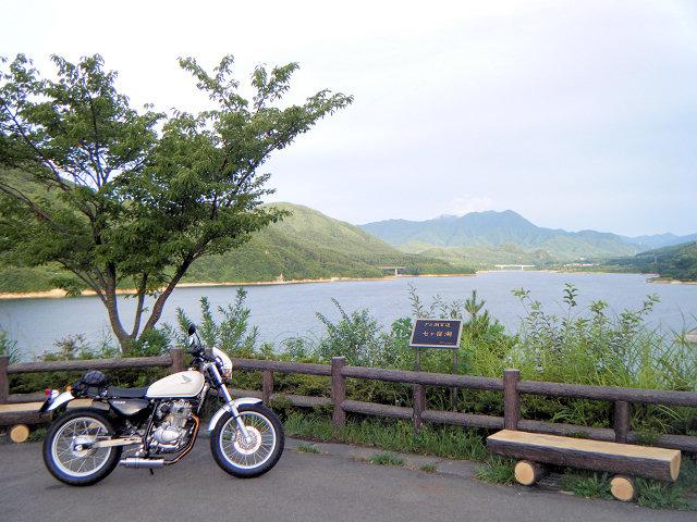 20100813-0547-15.jpg