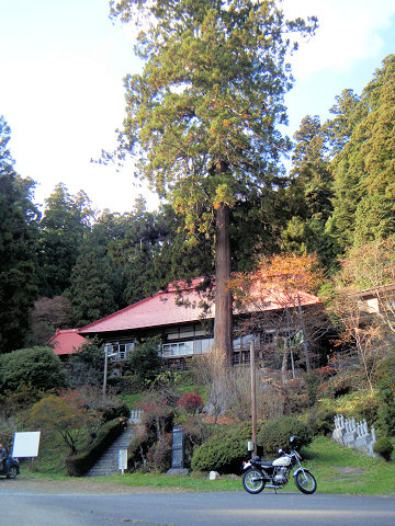 20101120-21.jpg